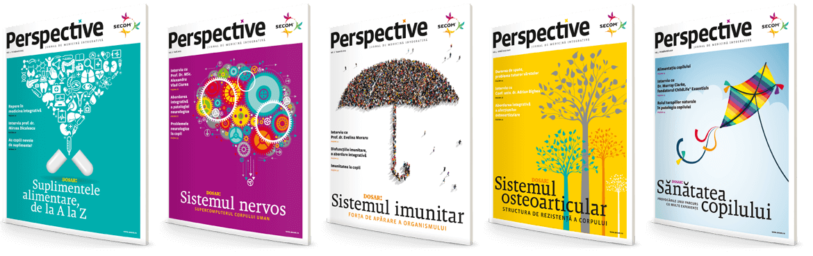 Secom's Perspective customer magazine covers